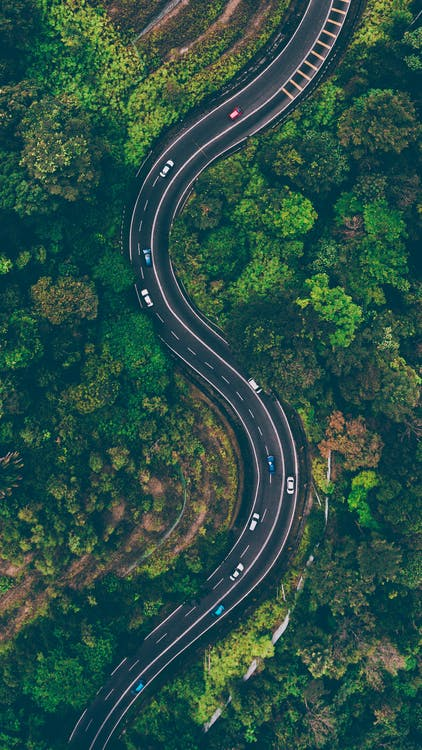 IoT and AI: Transforming Transport Management